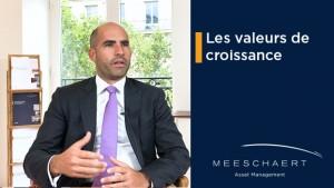 Que sont les valeurs de croissance ?