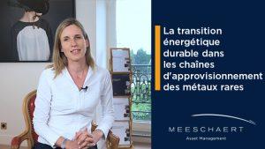 La transition énergétique durable dans les chaînes d'approvisionnement des métaux rares